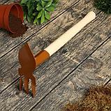 Мотыжка комбинированная, длина 34 см, деревянная ручка, фото 5