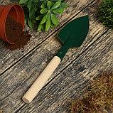 Совок посадочный, длина 30 см, ширина 7 см, деревянная ручка, фото 2