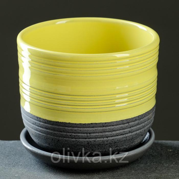 Лагуна желтый бук №3 2,79л