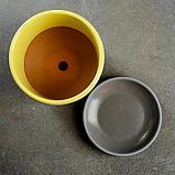 Лагуна желтый бук №3 2,79л, фото 3