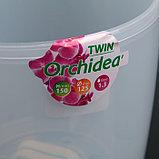 Горшок «Орхидея Twin», 1,3 л, цвет прозрачный, фото 4