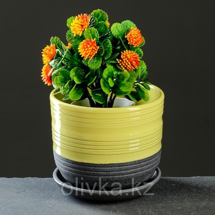 Лагуна желтый бук №1 0,75л