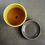 Лагуна желтый бук №1 0,75л, фото 4