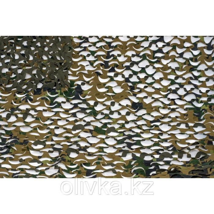 Маскировочная сеть «Пейзаж. Лес 3D», 2,2 × 1,5 м, зелёная/коричневая