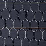 Сетка плетенная 1 х 10 м, ячейка 25 х 25 мм, d=1 мм, металл, фото 2