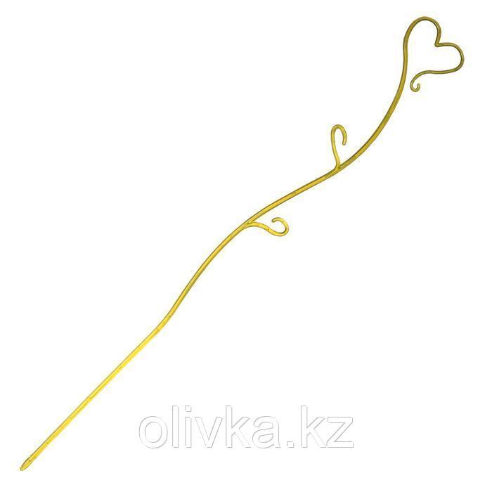 Поддержка для орхидей, h = 55 см, пластик, цвет МИКС, «Сердце»