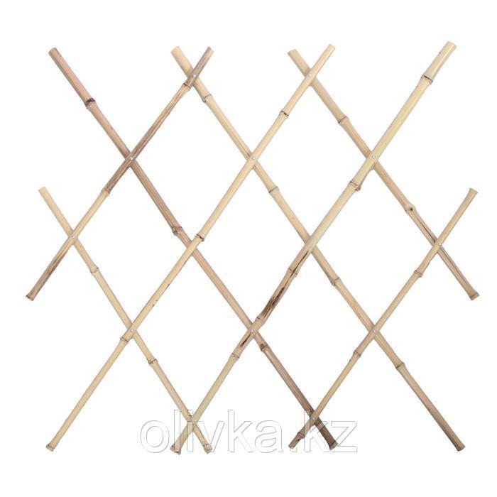 Шпалера, 60 × 90 см, бамбук