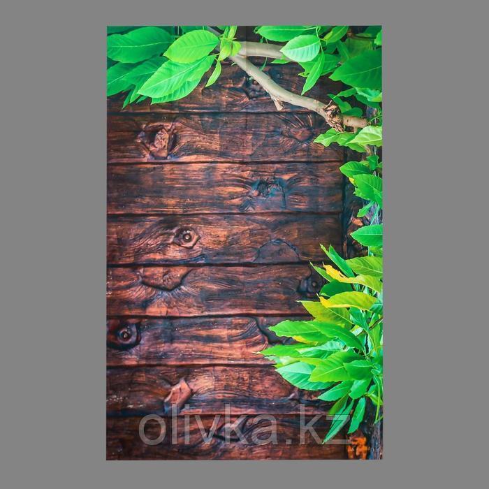 """Фотофон винил """"Зелёное дерево и коричневые доски """" 80х125 см"""