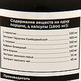 Жиросжигатель SportLine Nutrition Thermo Boost, 125 капсул, фото 2