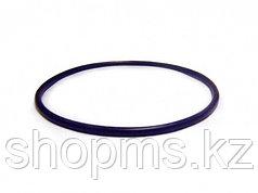 Кольцо уплотнительное для корпуса Гейзер BB 23143