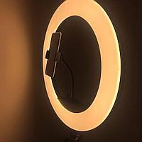 Кольцевая лампа HQ-18 43,5 см со штативом 2м, сумка чехол
