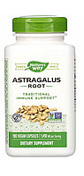 Астрагал. Astragalus 1410 мг. 180 капсул. Nature's way