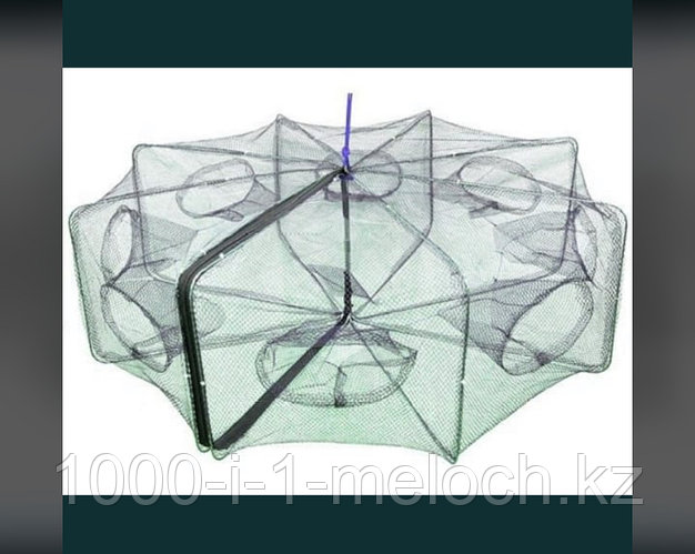 Раколовка зонтик