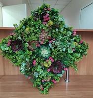 Фито панно из искусственных растений