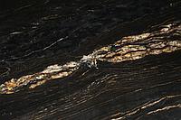 Гранит Titanium gold, слэб толщиной 30мм