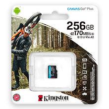 Kingston SDCG3/256GBSP карта памяти 256GB microSDXC Go U3 V30 Card без адаптера