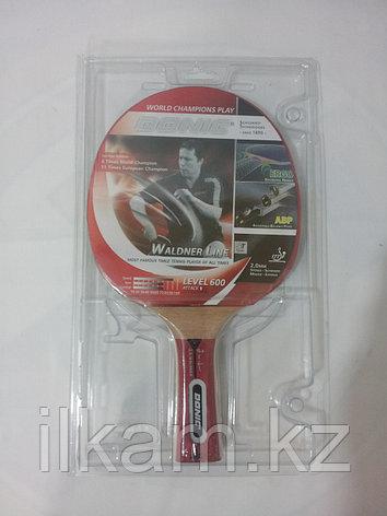 Ракетка для настольного тенниса Donic, фото 2