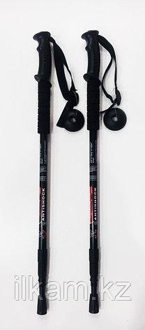 Палка скандинавская черные, фото 2