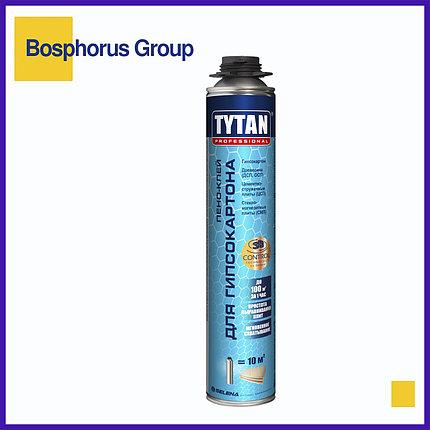 Клей-пена TYTAN для гипсокартона (по акции осталось 6 шт), фото 2