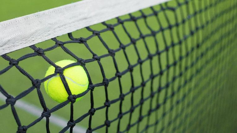 Сетка большого тенниса, фото 2