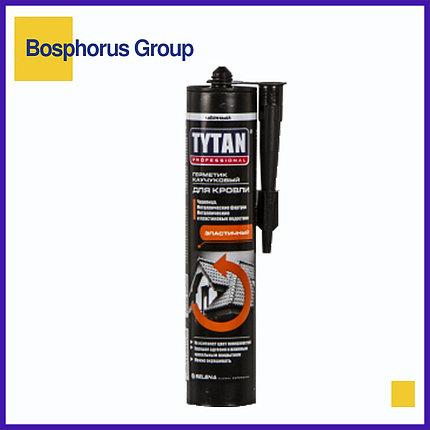 Герметик TYTAN для кровли каучуковый бесцветный, черный, фото 2
