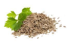 Семена зиры (кумина)