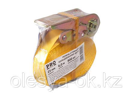 Ремень стяжной кольцевой 0,8т, 6м PRO STARTUL (багажный), фото 2