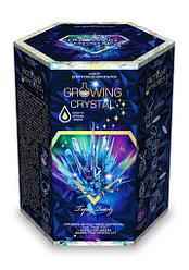 Растущий кристалл