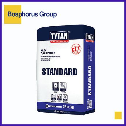 "Клей для плитки Tytan""Standard"", 25кг (для плиток размером <30x30 см), фото 2"