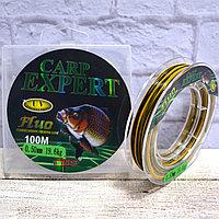 Леска рыболовная толщина 0.2 мм разрывная нагрузка 7.4 кг 100 м Carp expert желтая и черная