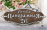 Адресная табличка У-500, литье алюминий, 223x600 мм, фото 2