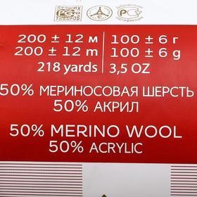 Пряжа 'Мериносовая' 50меринос.шерсть, 50 акрил 200м/100гр (02-Черный) - фото 10