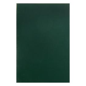 Тетрадь А4, 96 листов в клетку, 'Зелёная', обложка бумвинил (комплект из 2 шт.) - фото 1