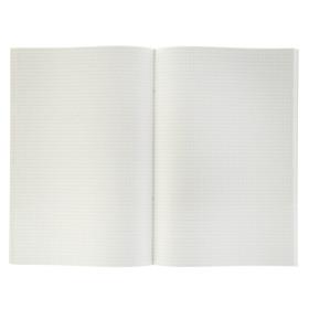 Тетрадь А4, 96 листов в клетку, 'Зелёная', обложка бумвинил (комплект из 2 шт.) - фото 2