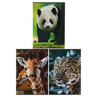 Тетрадь А4, 48 листов в линейку 'Дикие животные', картонная обложка, МИКС