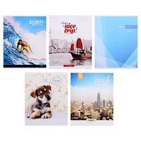 Тетрадь 96 листов в клетку 'Ассорти', обложка мелованный картон, блок офсет, МИКС (комплект из 5 шт.)