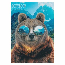 Тетрадь А4, 48 листов клетка Calligrata 'Медведь и горы', белизна 95, картонная обложка (комплект из 3 шт.) - фото 1