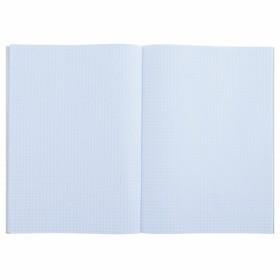 Тетрадь А4, 48 листов клетка Calligrata 'Медведь и горы', белизна 95, картонная обложка (комплект из 3 шт.) - фото 2