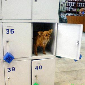 шкафы для хранения личных вещей