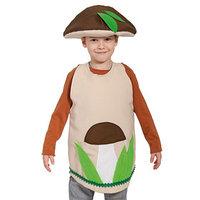 Карнавальный костюм 'Гриб боровик', текстиль, накидка и маска-шапочка, рост 98-128 см
