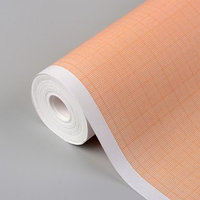 Масштабно-координатная бумага, 60 г/кв.м, 87 см, 20 м, цвет оранжевый