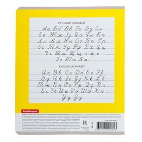 Тетрадь 24 листа, в линейку, Erich Krause 'Классика новая', обложка из мелованного картона плотностью 170 - фото 4
