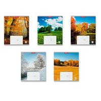 Тетрадь 24 листа в линейку 'Родные просторы', обложка мелованный картон, блок офсет, МИКС (комплект из 10 шт.)