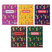 Тетрадь 48 листов клетка 'Кактус', обложка мелованный картон, блок офсет, МИКС (комплект из 5 шт.)