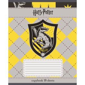Тетрадь 18 листoв в клетку 'Гарри Поттер', мелованный картон, микс (комплект из 20 шт.) - фото 4