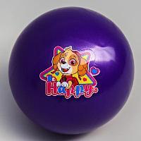 "Мяч детский Paw Patrol ""Happy"", 16 см, 50 гр 5083415"