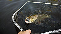 Сак рыболовный длина 3м