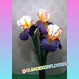 Большие цветы для интерьера. Светильник - ночник Ирис.  Creativ 71, фото 2