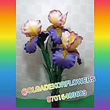 Большие цветы для интерьера. Светильник - ночник Ирис.  Creativ 71, фото 3
