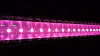 Фитолампа линейная полного спектра 120 см для цветов и рассады, фото 1